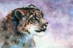 Snow leopard! My second favorite animals!!