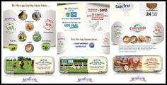 National Egg Month with NestFresh Eggs