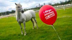Nach Bürgerentscheid: Frankfurter sagen JA zur DFB-Akademie - Der #Buergerentscheid gegen den Bau der #DFB-Akademie auf dem Gelände der Frankfurter #GaloppRennbahn ist gescheitert http://www.bild.de/sport/fussball/dfb/darf-akademie-bauen-buergerentscheid-gescheitert-41449520.bild.html GER loves #soccer,#Formula1(often also #cats+#dogs more than human),while young girls love #horses,no wonder #soccer/#DFB won over #horses;D
