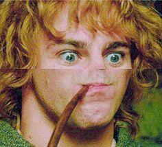 Dominic Monaghan as Merry the Creeper Legolas, Aragorn, Hobbit Funny, O Hobbit, Lotr, Into The West, 1 Gif, Smosh, Jrr Tolkien