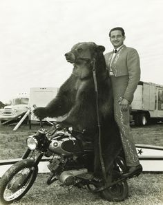 Circus bear, motorcycle, trainer photo