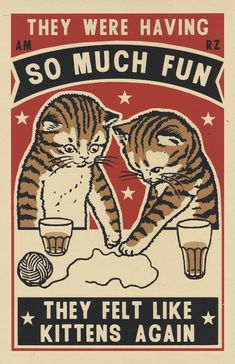 Three color screen prints by Arna Miller & Ravi Zupa, featuring fun and whimsical images of cats drinking at bars. Available for purchase online through Spoke Art Gallery. Illustration Inspiration, Illustration Art, Cat Illustrations, Screen Print Poster, Poster Prints, Drunk Cat, Poster Anime, Spoke Art, Drawn Art