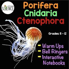 NO PREP Biology or Life Science Warm-Ups, Bell-Ringers, Exit Slips, and / or Additions to Interactive Notebooks for your units on invertebrates.