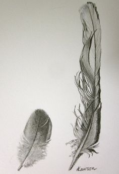 3 feathers original pencil drawing por anne4bags en Etsy