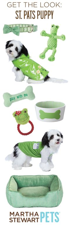 Go Green! Get your pet #StPatricksDay ready with #MarthaStewartPets - only @petsmartcorp !