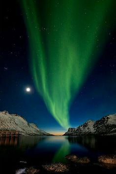 A u r o r a Beautiful Sky, Beautiful World, Beautiful Places, Northern Lights Norway, To Infinity And Beyond, Belle Photo, Night Skies, Aliens, Wonders Of The World