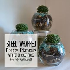 Pin It! Steel Wrapped Pretty Planters With Pop Of Color Rocks by ForMyLoveOf