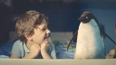 """Protagonisti di questo video un bambino e un pinguino di nome Monty. Il messaggio è veramente meraviglioso: """"Date a qualcuno il Natale che ha sempre sognato"""""""