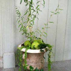 Fall planter from kori