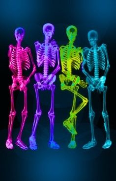 glowing skeletons? I think the yellow/green one needs a bathroom break...LOL