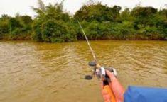 Kayak Fishing Tips for Beginners Kayak Fishing Tips, Kayaking, Outdoor Power Equipment, Healthy Lifestyle, Health Care, Live, Kayaks, Healthy Living, Garden Tools