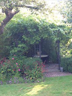 Een romantisch hoekje met een door druivenstruiken overgroeid stalen prieel