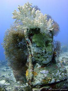 Buddha underwater temple pemuteran bali