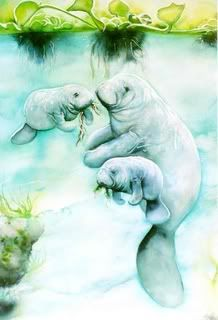 sea life - sea life photography - sea life underwater - sea life artwork - sea life watercolor sea l Ocean Creatures, Cute Creatures, Baby Animals, Cute Animals, Sea Cow, Fauna, Illustrations, Marine Life, Spirit Animal