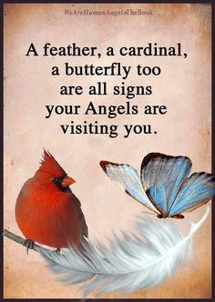 And sometimes bluebirds too! Miss Mom, Miss You Dad, Spiritual Quotes, Positive Quotes, Meaningful Quotes, Inspirational Quotes, Grief Poems, Loved One In Heaven, Sympathy Quotes