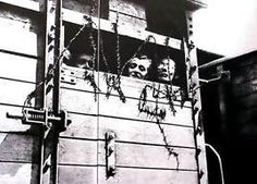 Hungarian Jews locked inside cattle car destined for a nazi death camp. Nazi Propaganda, Lest We Forget, Don't Forget, World History, Ww2 History, World War Two, Wwii, Germany, Pictures
