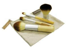 AmazonSmile : EcoTools MINERAL 5pc Make Up Brush Travel Set 1213 : Refillable Cosmetic Containers : Beauty