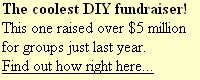 Ideas for fundraising (not selling junk!)