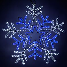 love the flashing blue and white led christmas lights holiday lights outdoor christmas - Blue And White Outdoor Christmas Decorations