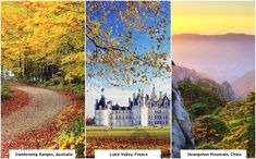 Stop counting the days to Christmas, just pack your bags, get out of that lazy couch, pull on your walking boots and hit the road to witness magical autumn colors.#youngnfab #travel #christmas #autumn #places #travelling #instatravel #instago #holidays #fun #tourism #tourist #instatraveling #travelling #travelgram