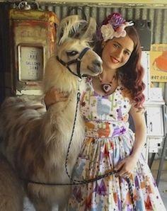 The llama dress makes this even better. Llama Face, Llama Llama, Funny Llama, Cute Llama, Llama Pictures, Funny Animal Pictures, Beautiful Creatures, Animals Beautiful, No Drama Lama