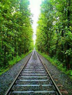 Indian Roadie: Shornur - Nilambur railway route through Palakkad and Malappuram districts in Kerala Blur Photo Background, Train Route, Amazing India, Kerala Tourism, Visit India, Ferrat, Train Journey, Train Tracks, India Travel