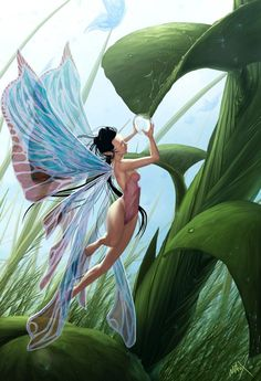 Fairy Picture by Juan Nitrox Marquez