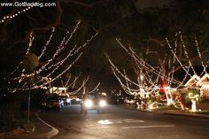 Day and The Lights at Candy Cane Lane Sleepy Hollow in Torrance Street Trees, I Love La, Sleepy Hollow, Light Photography, Yahoo Images, Candy Cane, Christmas Lights, Beverly Hills, Image Search