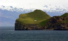 Iceland Thanks Björk With An Island | that's what i'd do.