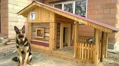 Dog Friendly Garden, Luxury Dog Kennels, Large Dog House, Dog House Plans, House Dog, Cool Dog Houses, Pet Houses, Dog Car, Sleeping Dogs
