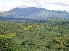 Zip view on Kauai
