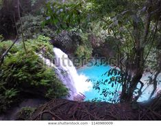 Find Blue River Waterfall Turquoise Waterfall Hidden stock images in HD and millions of other royalty-free stock photos, illustrations and vectors in the Shutterstock collection. Thousands of new, high-quality pictures added every day. Philippines, Vectors, Waterfall, Photo Editing, Royalty Free Stock Photos, Turquoise, Illustrations, River, Island