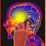 """""""50+ EMF Safety Tips & Insights""""*    Overview of Cell Phone & Wireless Technology Hazards"""