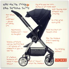 Stooke Scoot Review