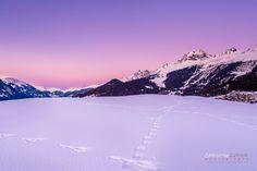 Switzerland, winter, Brigels, surselva, night, snow, Christian Zedler
