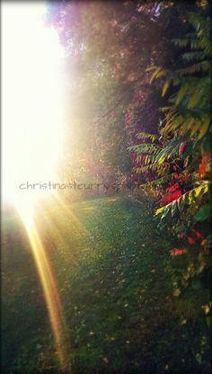 Facebook.com/christinasteurrysphotography