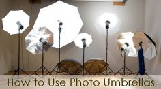 How to Use Photo Umbrellas | Backdrop Express Photography Blog
