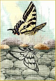 Cross Stitch, Butterfly