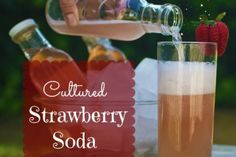 Cultured Strawberry Soda at Holistic Squid