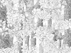 Core of Nature - Fototapety - Photowall