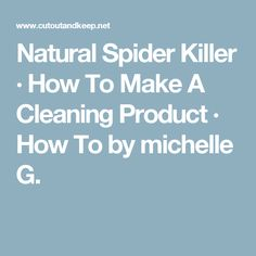Natural Spider Killer · How To Make A Cleaning Product · How To by michelle G.