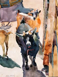 Sue Pohanka- watercolor