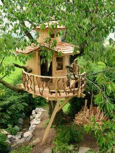 Die Baumhaus-profis (dci) | Tree Houses | Pinterest Wendeltreppe Um Einen Baum Baumahus