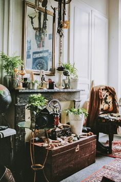 the more plants in the living room the better