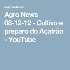 Agro News 08-12-12 - Cultivo e preparo do Açafrão - YouTube