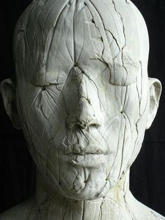 head sculpture*