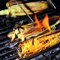 L'été, je mange plein d'épis de maïs. Je dirais même que cet été, nous avons établi un record de consommation de blé d'inde. Du bon maïs qui se vend tout frais cueilli du champ vendu au kiosque du coin de la rue (ça a ses avantages d'habiter en banlieue lointaine!). Mais voilà, on ne mange pas autant de blé d'inde en se contentant uniquement de maïs bouilli. C'est vrai que c'est bon, mais il faut parfois changer! Dans ce billet, je vous explique plusieurs de mes mé... Facon, C'est Bon, Vegetarian Recipes, Bbq, Turkey, Vegan, Vegetables, Ears Of Corn, Vegetarian Food