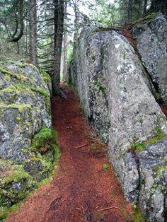 Duck Harbor Mountain Trail Acadia National Park