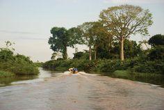 Ciénagas del Catatumbo (Rubén Soffer)