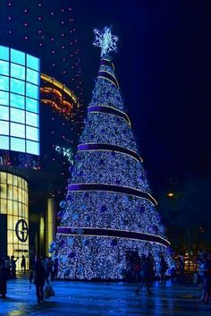 Navidad. ..
